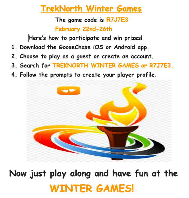 Winter Games Goosechase